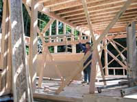 Ceiling joists for the main floor